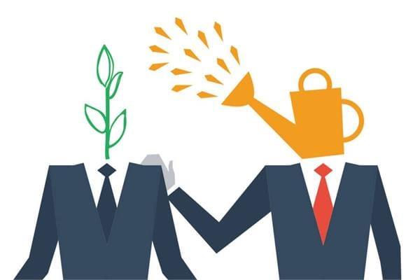 Mentor là gì? Vì sao doanh nghiệp phải tốn hàng tỷ đồng thuê mentor mỗi năm? - CÔNG TY TNHH GIẢI PHÁP WIN ERP