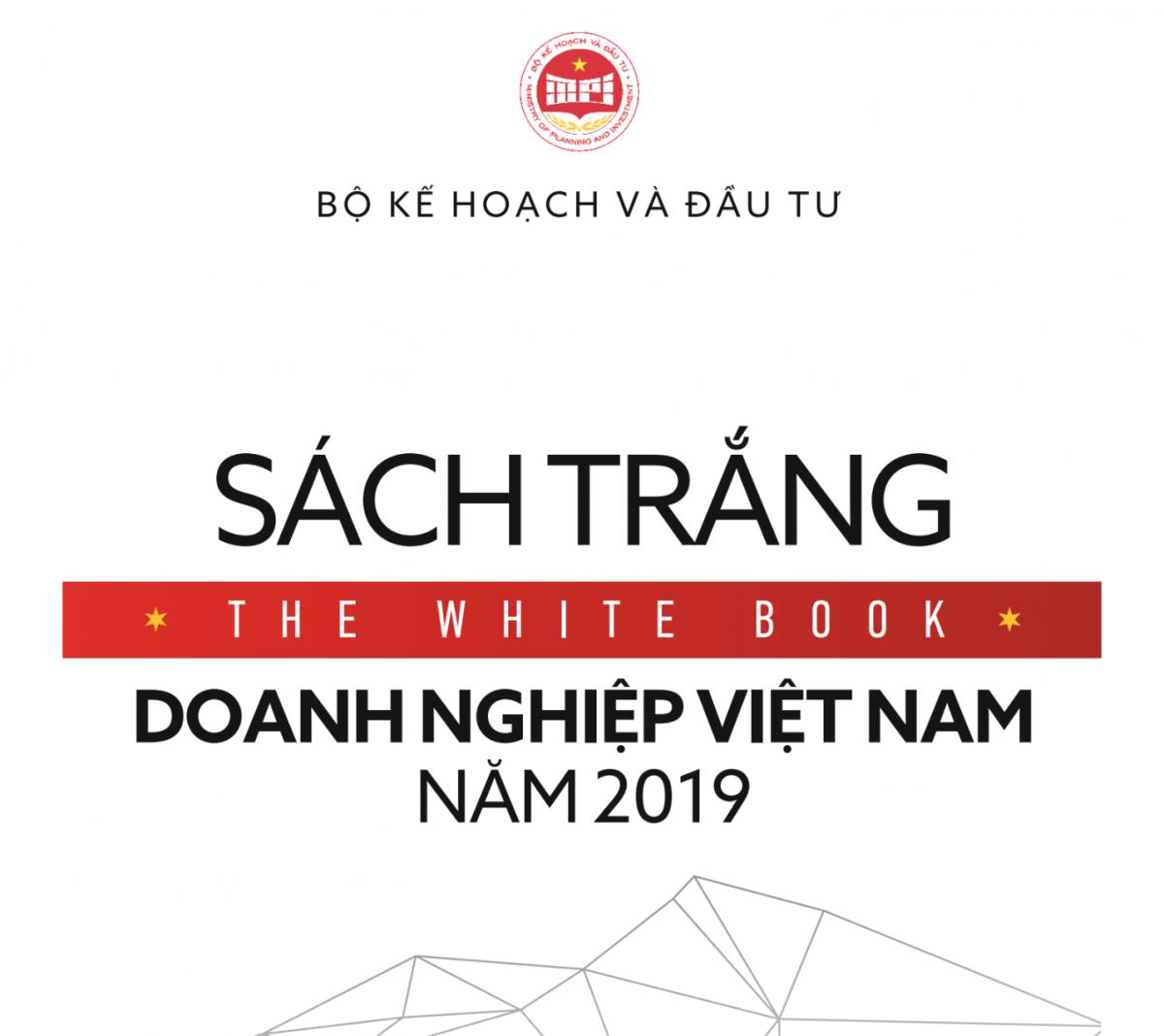 Sach Trang Doanh Nghiep Viet Nam 2019 1