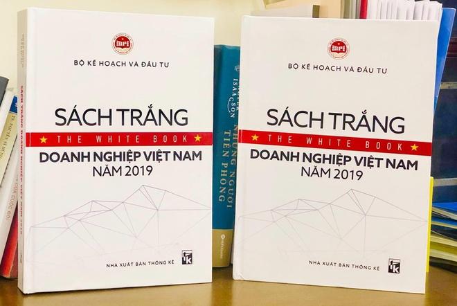 Sach Trang Doanh Nghiep Viet Nam 2019 2