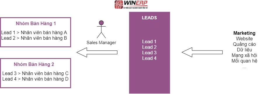Hình 19. Lead đến từ hoạt động Marketing